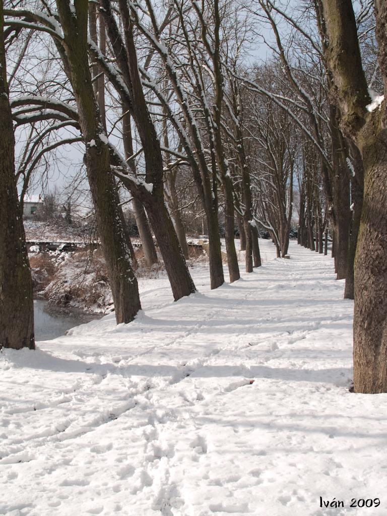Paseo de invierno