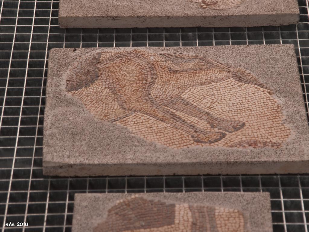 Restauración mosaicos