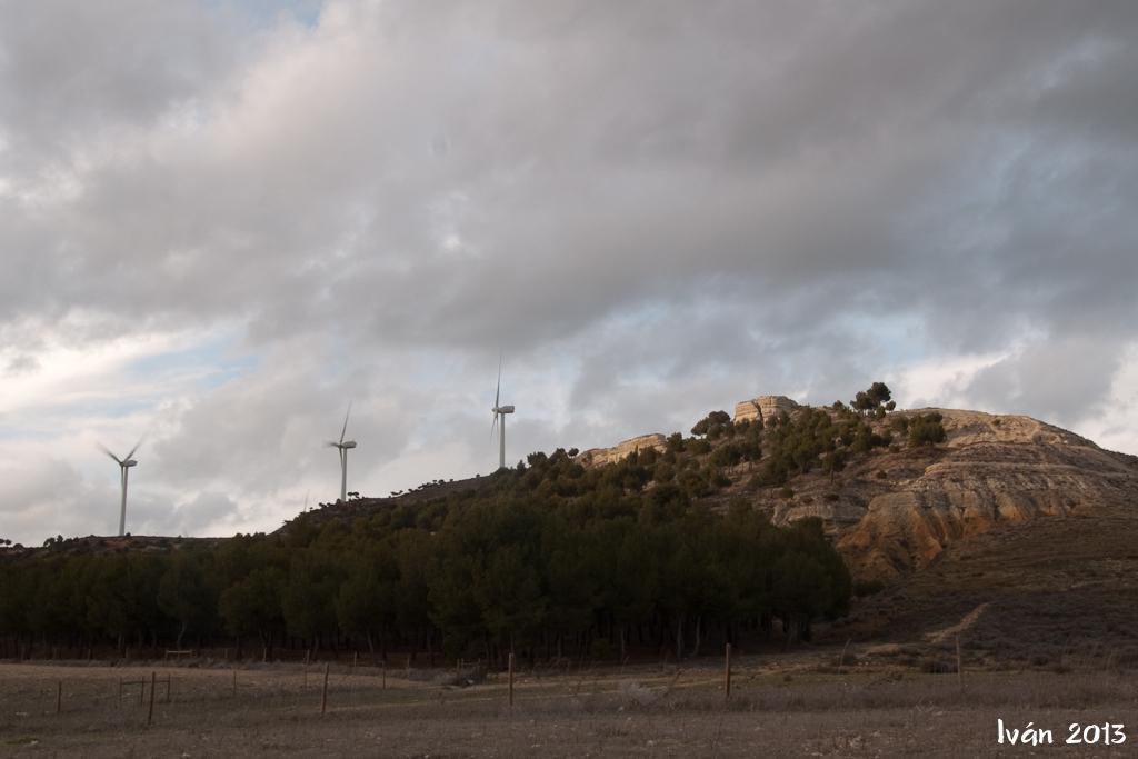 Pinares de Castilla