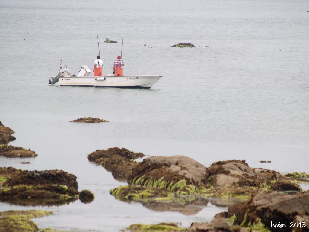 Trabajando el marisco desde la barca