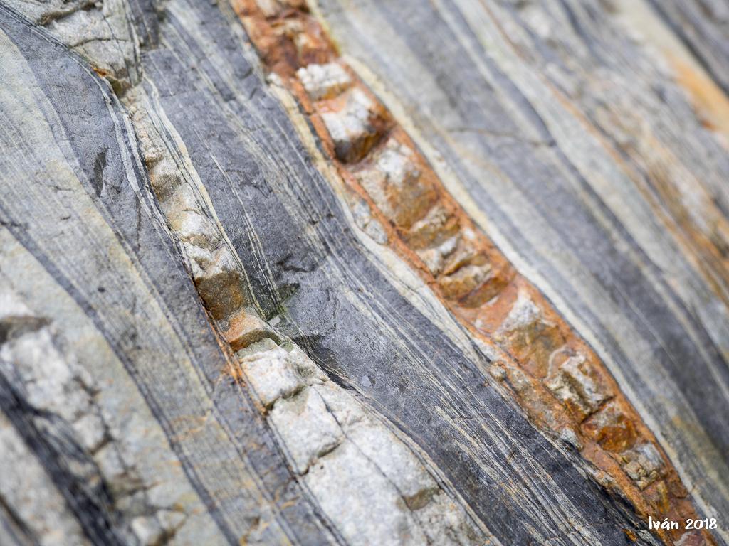Detalle en roca