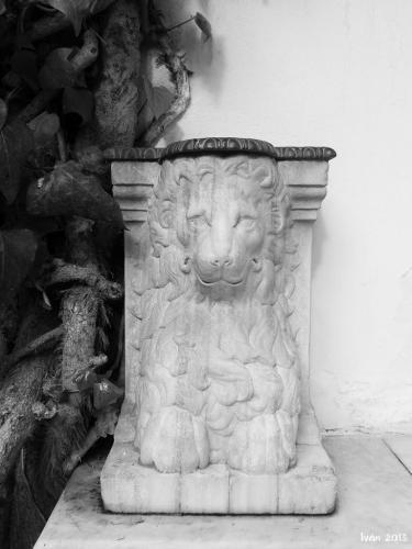 León de Marmol